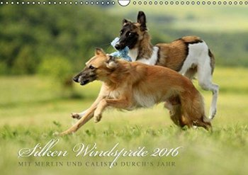 silken-windsprite-kalender-2016-goldenmerlo-merlin-calisto-ansicht-cover