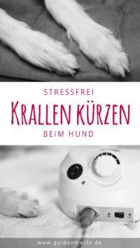 Schleifen statt Schneiden. So kannst du deinem Hund enstpannt und Stressfrei die Krallen kürzen. Präzise, sauber und natürlich schmerzfrei für den Hund.