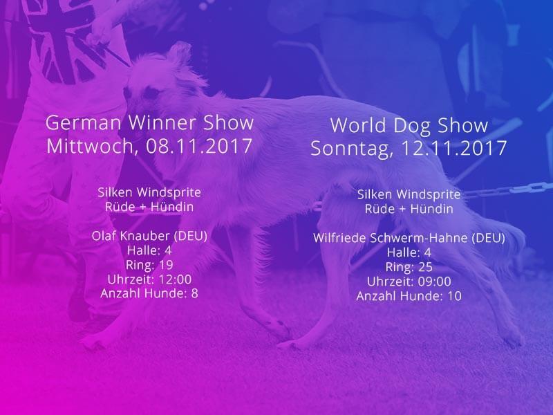 Windsprites bei der World Dog Show in Leipzig