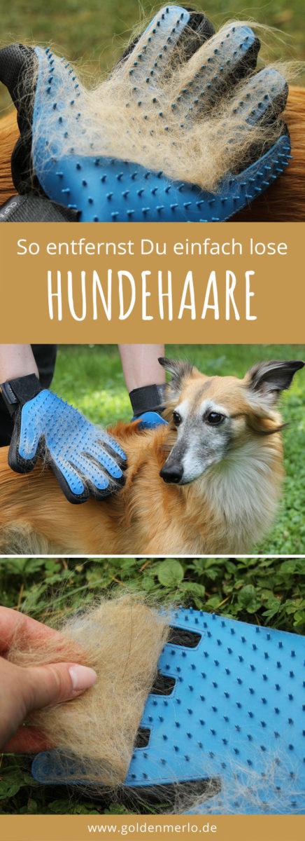 CLIP & MOVE Haustier Handschuh für Tierhaare Fellpflege und Reinigung Bürste Hund Katze