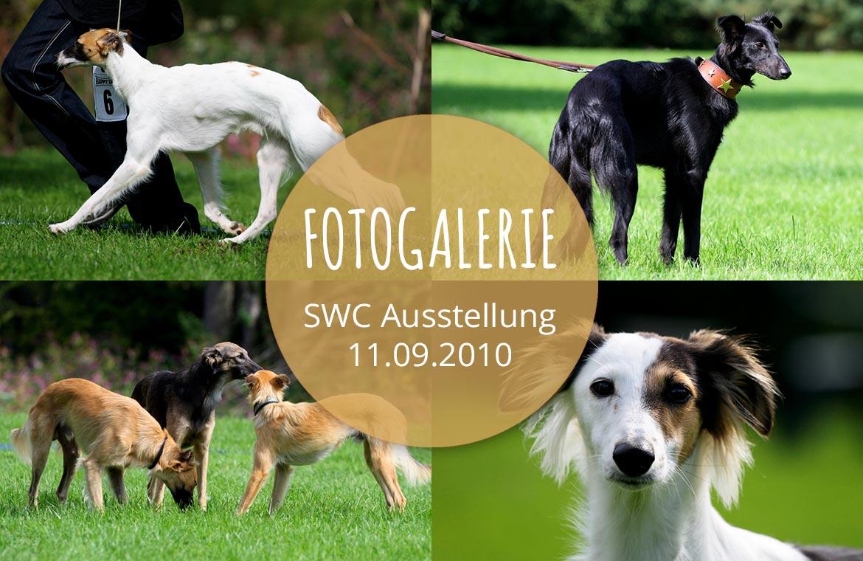 September 2010 – Fotogalerie der Silken Windsprite Ausstellung