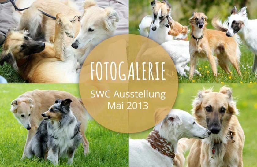 Mai 2013 – Fotogalerie der Silken Windsprite Ausstellung